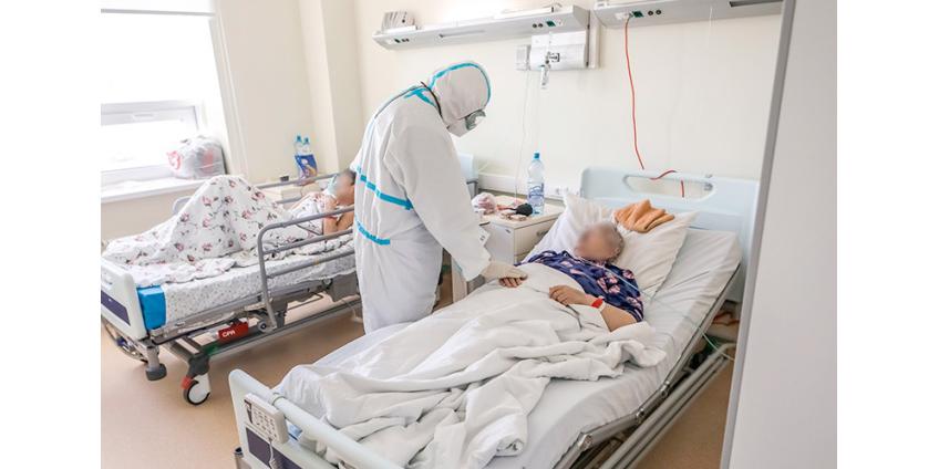 В России за сутки зарегистрировали 24,1 тыс. случаев COVID-19, умерли 504 пациента