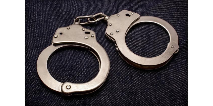 Полиция Лос-Анджелеса произвела более 200 арестов на подпольных вечеринках