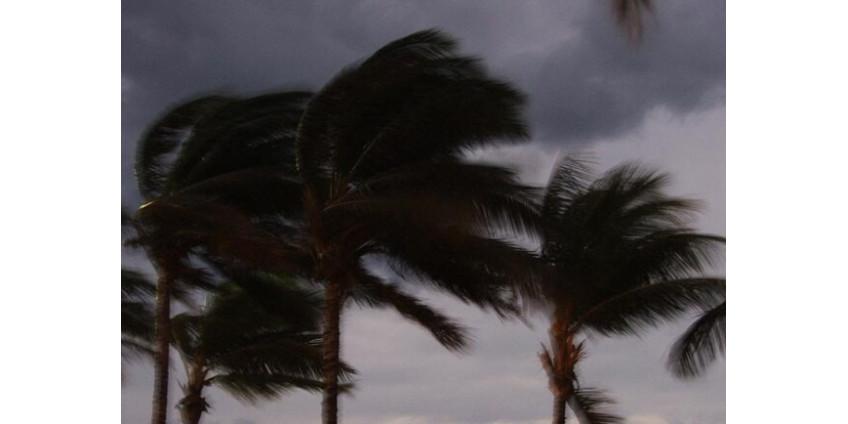 Сильный ветер ожидается в округе Лос-Анджелес до полудня понедельника