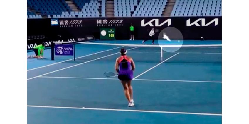 Теннисный матч в Мельбурне прервали из-за нашествия чаек