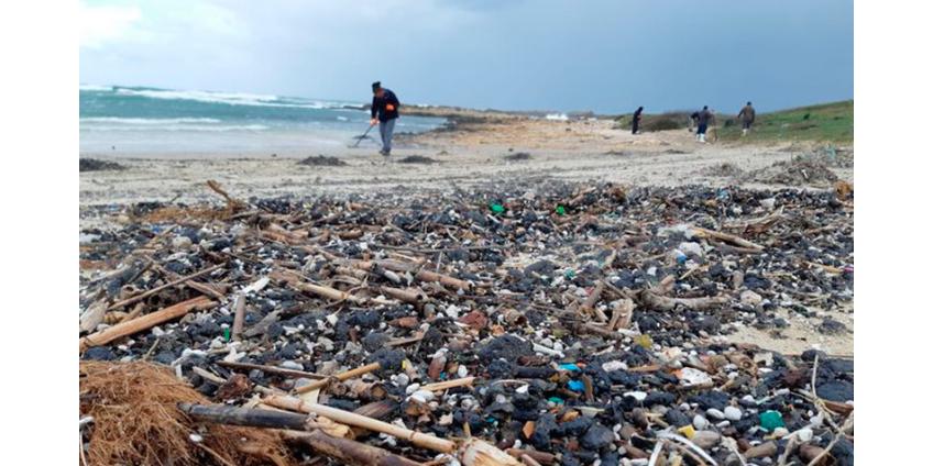 На средиземноморском побережье Израиля произошла экологическая катастрофа: пляжи в мазуте, животные гибнут