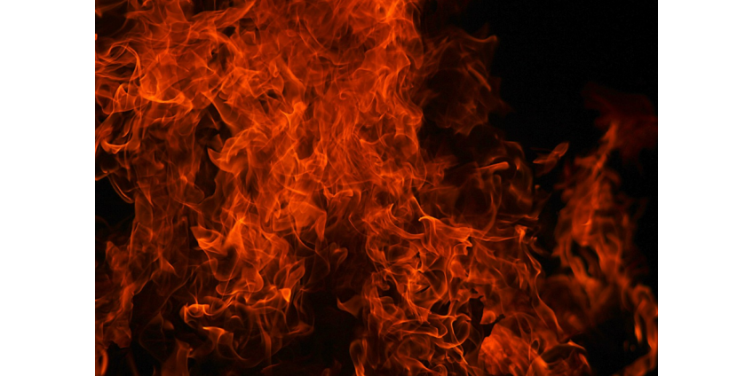 Полицейские Финикса спасли женщину и четверых детей от пожара в доме