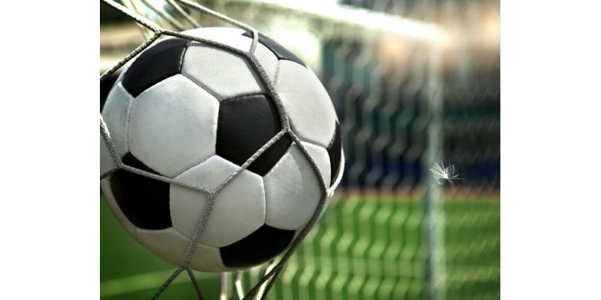 Судья извинился за незасчитанный гол Роналду на последних минутах матча с Сербией