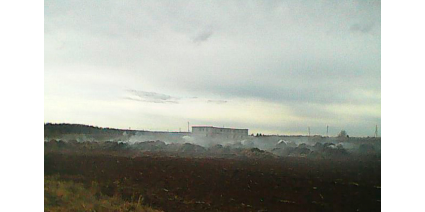 Две школьницы сожгли ферму в Пермском крае ради ролика для TikTok