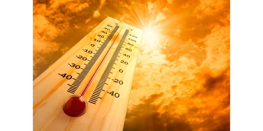 В 12 округах Аризоны были выпущены предупреждения о чрезвычайной жаре