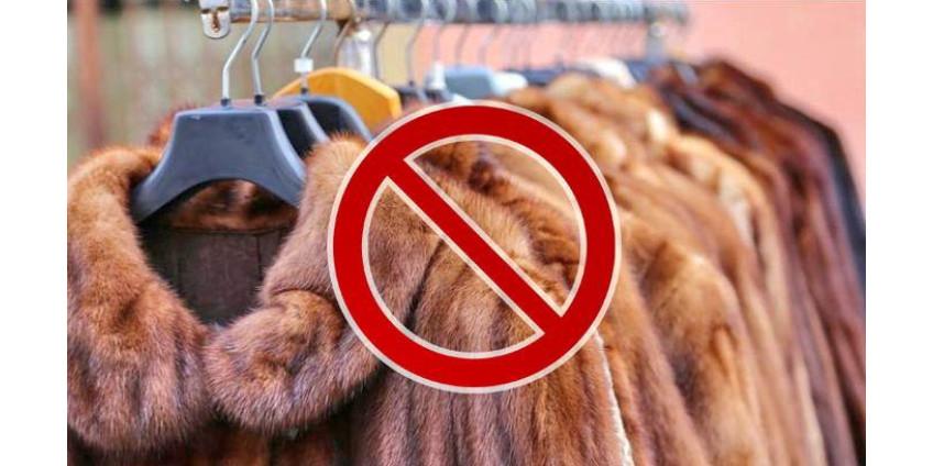 Израиль первым в мире запретил продажу меха