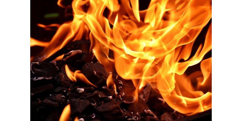 В результате пожара на конном ранчо в Сан-Диего погибли два человека