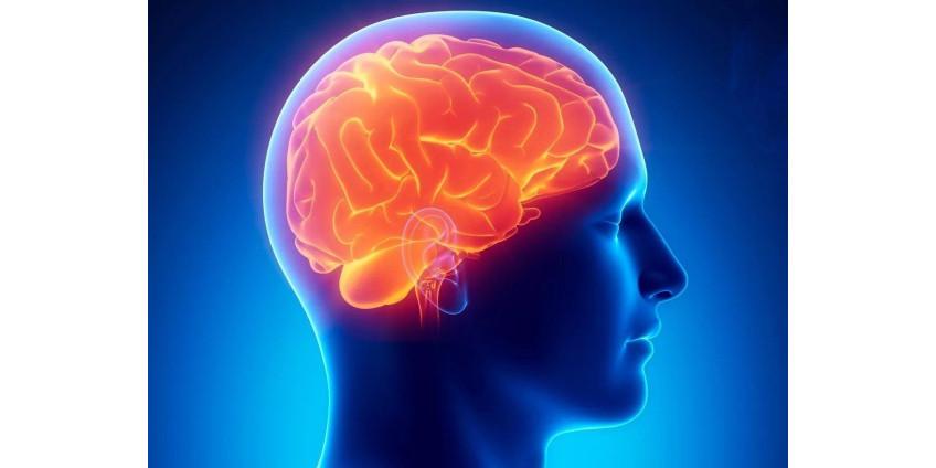 Человеческий мозг оказался способен путешествовать во времени