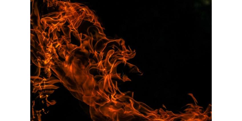 При пожаре в Финиксе благополучно спаслась семья