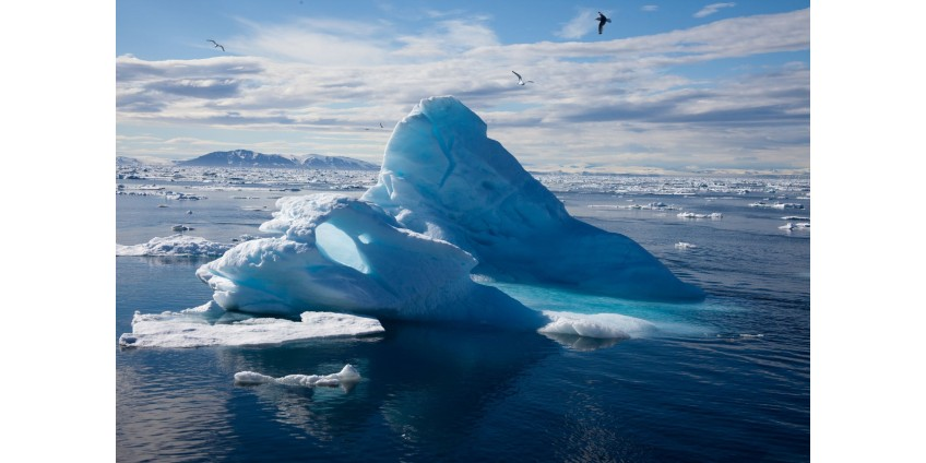 Раскрыт катастрофический вред от освоения Арктики