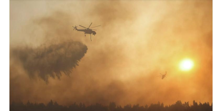 В Греции ситуацию с пожарами назвали беспрецедентным экологическим кризисом