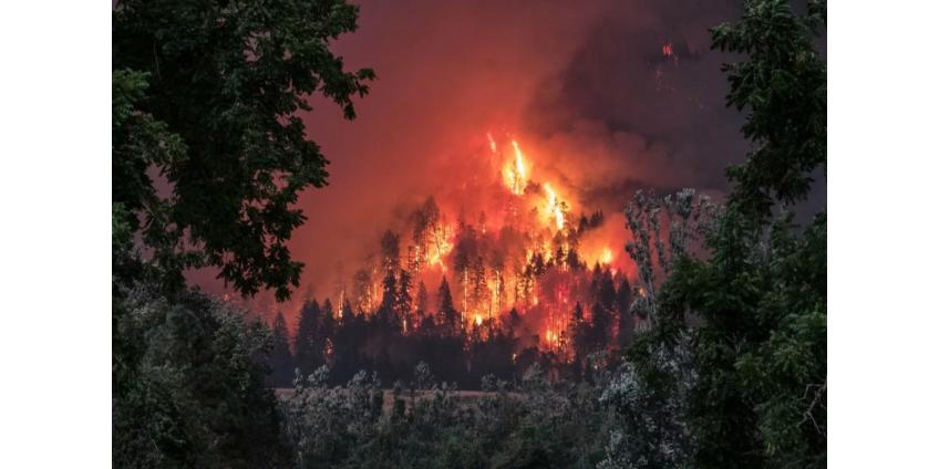 Рабочий заживо сгорел в лесном пожаре в Якутии