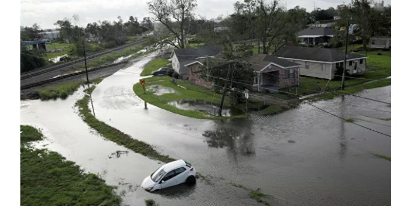 Мужчина в США пропал без вести после атаки аллигатора при наводнении