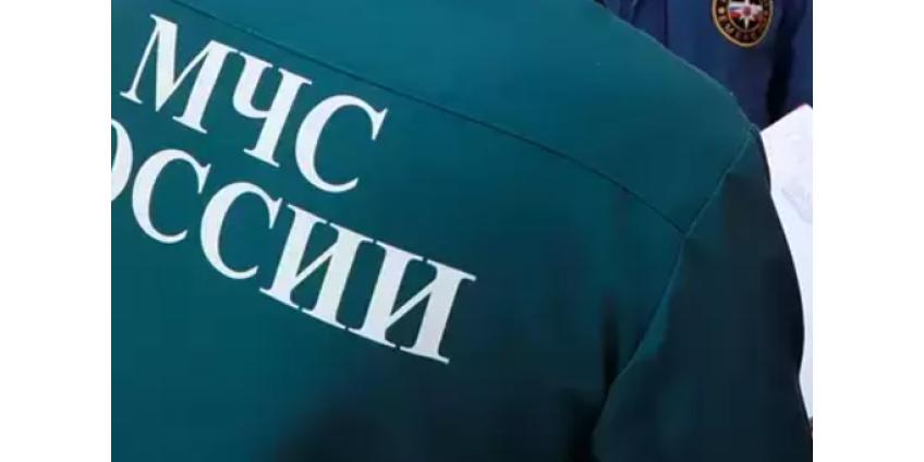 Пропавших девять дней назад в лесу россиянок нашли живыми