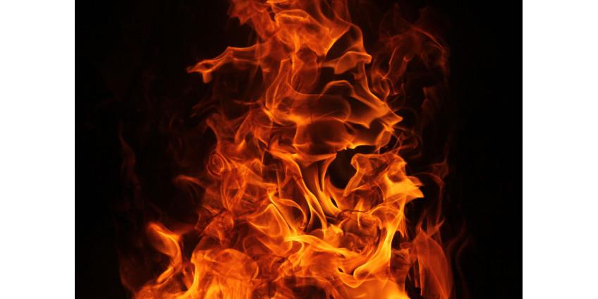 Три члена семьи погибли, двое были ранены в результате пожара в доме на Юге Лос-Анджелеса