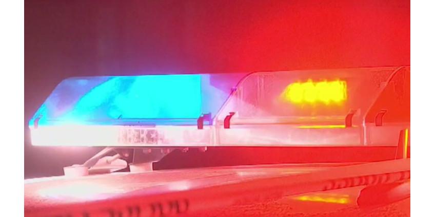 Трое студентов из Аризоны были задержаны за хранение запрещенных препаратов